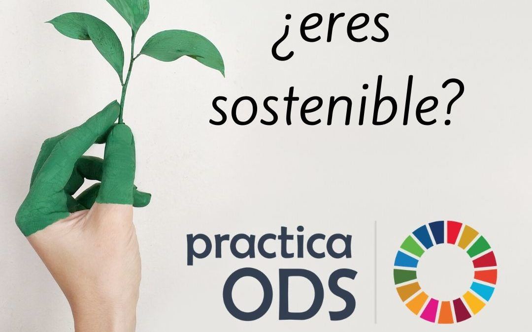 PracticaODS sostenible 1080x675