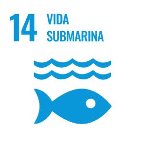 S SDG inverted WEB 14